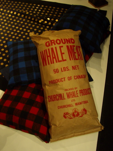 ground whale meat